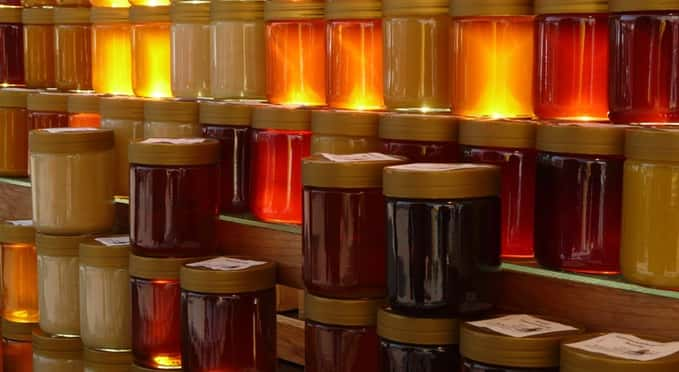 what is earn honey